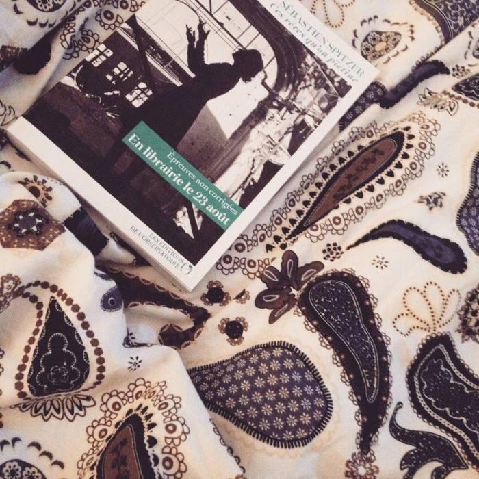Ces rêves qu'on piétine • SébastienSpitzer